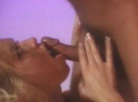 sex in hof braunschweig sex